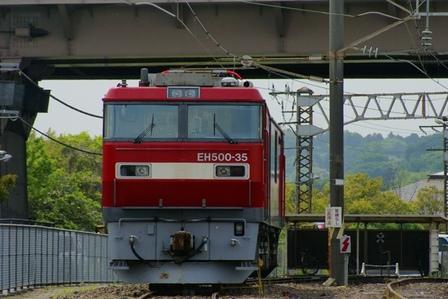 DSC04889.JPG